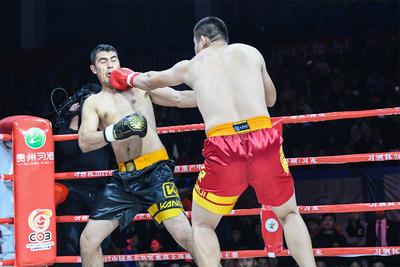 2017中国拳王争霸赛07